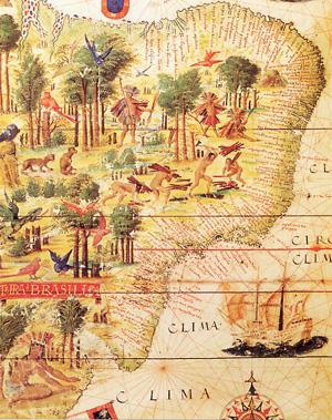 Carte du Brésil au XVIème siècle