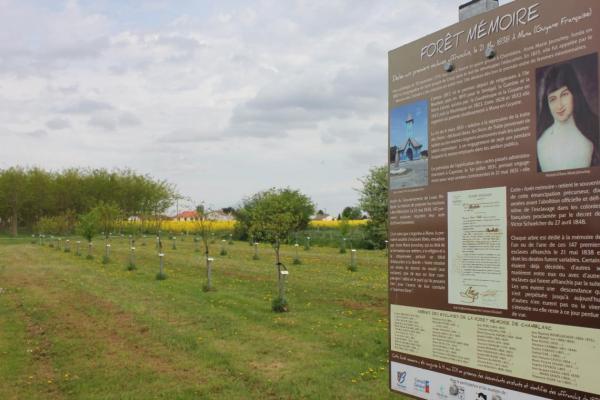 Forêts mémoire Anne Marie Javouhey